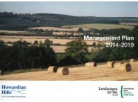 Management Plan 2014-19